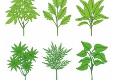 Free vector Different hand drawn plants #11157
