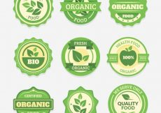 Free vector Pack of nine round organic food stickers #8067