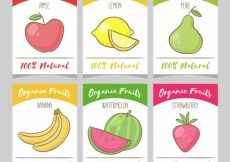 Free vector Set of hand drawn fruit cards #10665