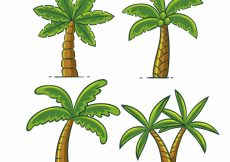 Free vector Set of hand-drawn palm trees #3769