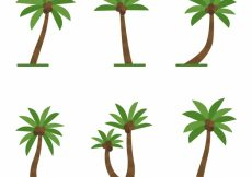 Free vector Set of palm trees with coconuts #4880