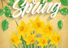 Free vector Spring sales background with flowers #7323