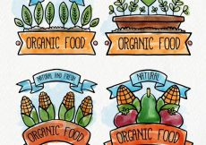 Free vector Watercolor organic food label collection #8011