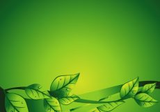 Free vector Green floral background with leaves #18671