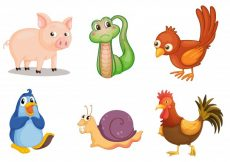 Free vector Illustration of collection of animals #13467