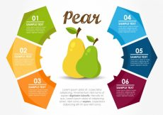 Free vector Infographic template with pears #17391