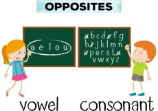 Free vector Opposite wordcard for vowel and consonant #18571