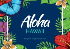 Free vector Realistic aloha background #17546