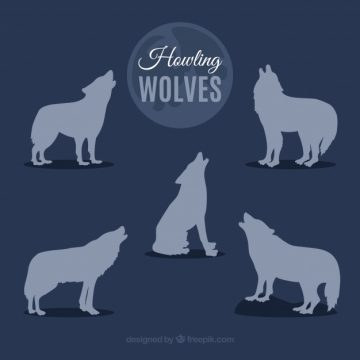 Free vector Silhouettes of wolves howling #17685