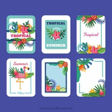 Free vector Tropical card collection #18137