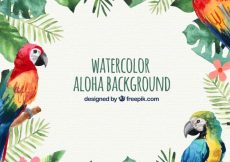 Free vector Water color parrots aloha background #17520