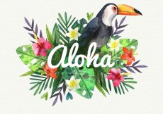 Free vector Water color pelican aloha background #17528