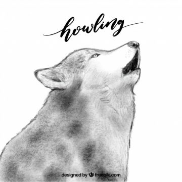 Free vector Watercolor wolf background howling #16231