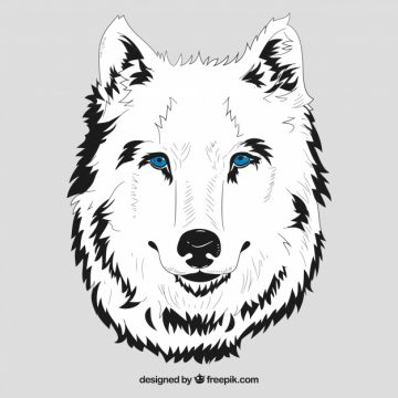 Free vector White head of wolf with blue eyes #16223