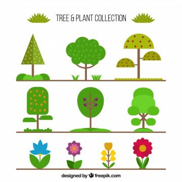 Free vector Collection of tree and plant in flat design #19775