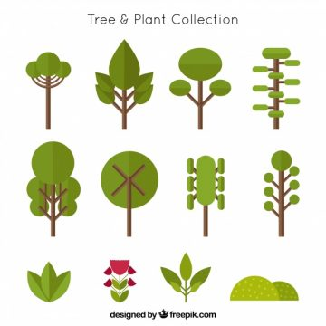 Free vector Collection of trees in flat design and shrubs #19769