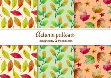 Free vector Colorful patterns with watercolor autumnal leaves #22535