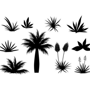 Free vector Free Tropical Plant And Grass In Silhouette Vector #21993