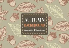 Free vector Hand drawn autumn background with artistic style #22567