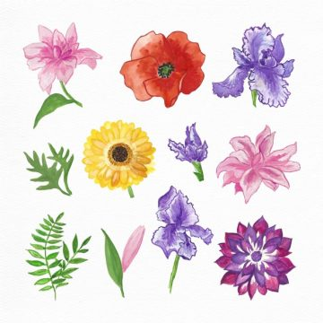 Free vector Hand painted watercolor flowers collection #19155