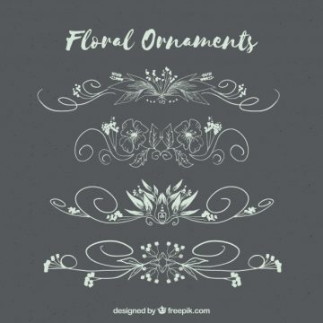 Free vector Pack of hand drawn floral ornaments #22759