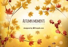 Free vector Realistic autumnal background with leaves and mushrooms #22609