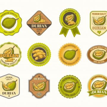 Free vector Set of black and white vector badges, stickers, high quality signs, with durian fruit #23049