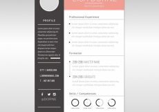 Free vector Elegant cv template with graphics #24002