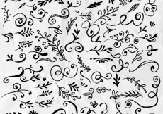 Free vector Hand drawn floral ornaments #953