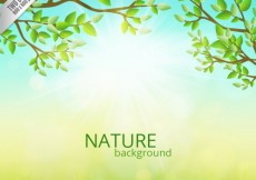 Free vector Nature background #997