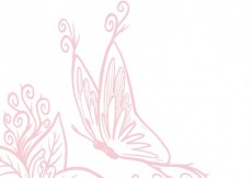 Free vector Sketchy butterfly #1008