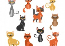 Free vector Variety of cats #1140