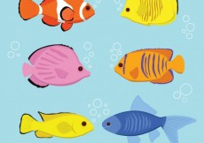 Free vector Variety of fish breeds #251