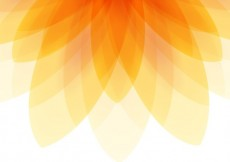 Free vector Abstract flower background #7321