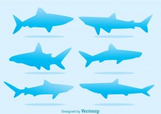 Free vector Blue Shark Silhouette Vectors #4627