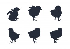 Free vector Chick Silhouette Vectors #6558