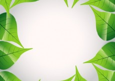 Free vector Frame made with leaves #10173