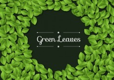 Free vector green leaves background #4182