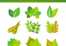 Free vector Green leaves collection #11218