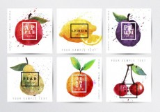 Free vector Hand painted fruits posters #7556