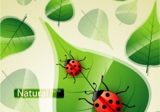 Free vector Nature background with ladybug #10151