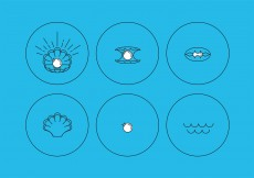 Free vector Pearl and Shell Icons #11846