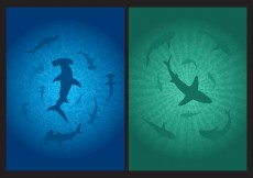 Free vector Shark Background Vectors #11049