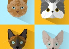 Free vector Variety of cats #10968