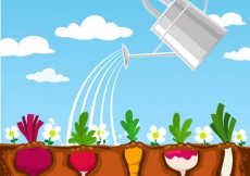 Free vector Vegetable garden #8596