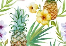 Free vector Watercolor tropical fruit and plants #9494