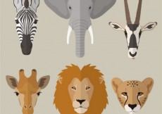 Free vector African animals #18287