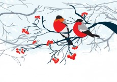 Free vector Card with Birds on Branch #16470