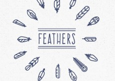 Free vector Cute fetahers collection #18566