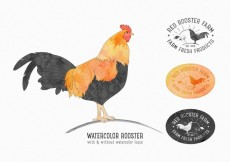 Free vector Free Vector Rooster Set #14588